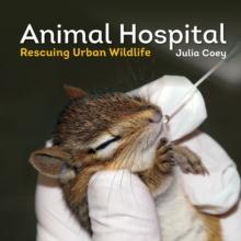 Animal Hospital : Rescuing Urban Wildlife