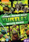 Teenage Mutant Ninja Turtles: Mutagen Mayhem - Season 2 Volume 1 - DVD