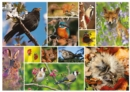 RSPB - Great British Wildlife 1000 Piece Jigsaw - Book