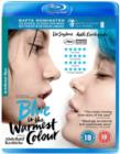 Blue Is the Warmest Colour - Blu-ray
