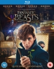 Fantastic Beasts and Where to Find Them - Blu-ray