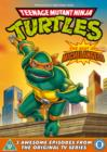 Teenage Mutant Ninja Turtles: Best of Michelangelo - DVD