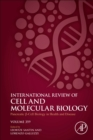 Pancreatic B Cell Biology in Health and Disease : Volume 359 - Book