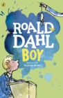 Boy : Tales of Childhood - eBook