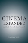 Cinema Expanded : Avant-Garde Film in the Age of Intermedia - Book