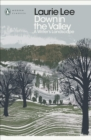 Down in the Valley : A Writer's Landscape - eBook