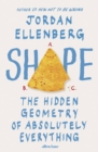 Shape : The Hidden Geometry of Absolutely Everything - Book