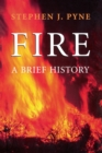 Fire : A Brief History - eBook
