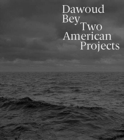 Dawoud Bey : Two American Projects - Book