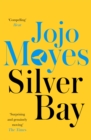 Silver Bay : 'Surprising and genuinely moving' - The Times - Book