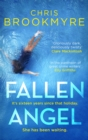 Fallen Angel - Book