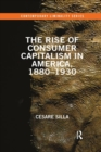 The Rise of Consumer Capitalism in America, 1880 - 1930 - Book