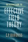 Introduction to Effective Field Theory : Thinking Effectively about Hierarchies of Scale - Book
