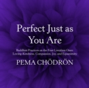 Perfect Just as You Are : Buddhist Practices on the Four Limitless Ones: Loving-Kindness, Compassion, Joy, and Equanimity - eAudiobook