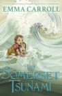 The Somerset Tsunami - Book