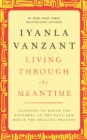Living Through the Meantime : Learning to Break the Patterns of the Past and Beg - eBook