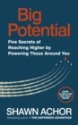 Big Potential : Five Secrets of Reaching Higher by Powering Those Around You - Book