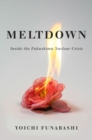 Meltdown : Inside the Fukushima Nuclear Crisis - Book