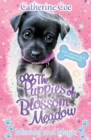 Mischief and Magic (Puppies of Blossom Meadow #2) - Book