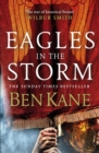 Eagles in the Storm - eBook