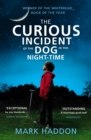 The Curious Incident of the Dog in the Night-time : Vintage Children's Classics - eBook