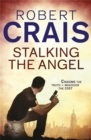Stalking The Angel - Book