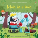 Mole in a Hole - Book