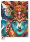 Dharma Dragon Ultra Horizontal 2020 Diary - Book
