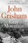 Gray Mountain : A thrilling, fast-paced suspense story - Book