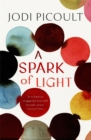 A Spark of Light : from the author everyone should be reading - Book