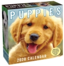 Puppies 2020 Day-to-Day Calendar - Book