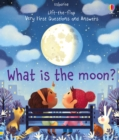 What is the Moon? - Book