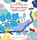 Are You There Little Owl? - Book