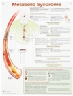 Metabolic Syndrome Anatomical Chart Laminated - Book