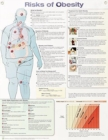 Risks of Obesity Anatomical Chart Laminated - Book