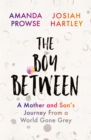 The Boy Between : A Mother and Son's Journey From a World Gone Grey - Book