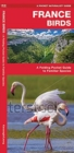 France Birds : A Folding Pocket Guide to Familiar Species - Book