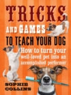 Tricks and Games to Teach Your Dog : How to Turn Your Well-loved Pet into an Accomplished Performer - eBook