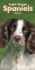 English Springer Spaniels Slim Diary 2020 - Book