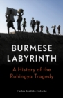 The Burmese Labyrinth (Lbe) - Book