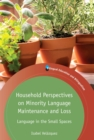 Household Perspectives on Minority Language Maintenance and Loss : Language in the Small Spaces - Book