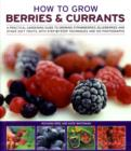 How to Grow Berries and Currants : A Practical Gardening Guide for Great Results, with Step-by-step Techniques and 185 Colour Photographs - Book
