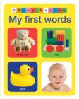 My First Words : Baby Basics - Book
