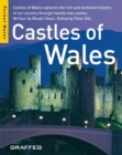 Castles of Wales : Castles of Wales Captures the Rich and Turbulent History of Our Country Through Twenty-two Castles - Book