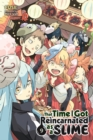 That Time I Got Reincarnated as a Slime, Vol. 9 (light novel) - Book