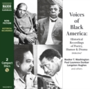 Voices of Black America - eAudiobook