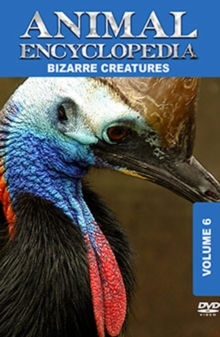 Animal Encyclopedia: Volume 6 - Bizarre Creatures, DVD  DVD