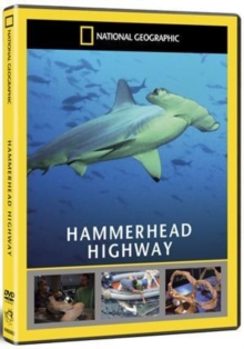 National Geographic: Hammerhead Highway, DVD  DVD