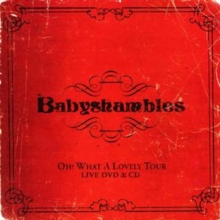 Oh What a Lovely Tour - Babyshambles Live [cd + Dvd], CD / Album Cd