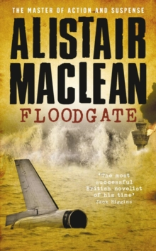Floodgate, Paperback Book